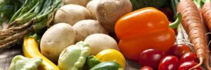 Public procurement of food and groceries