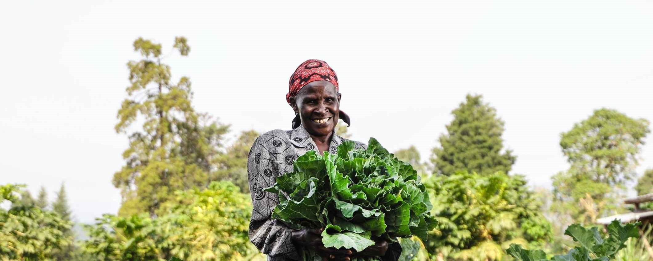 Green enterpreneurship